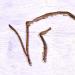Initials1